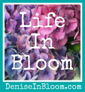 Life in Bloom with Dana Pittman