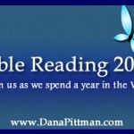 Taking in the Details - Part 2 of Bible Reading 2013