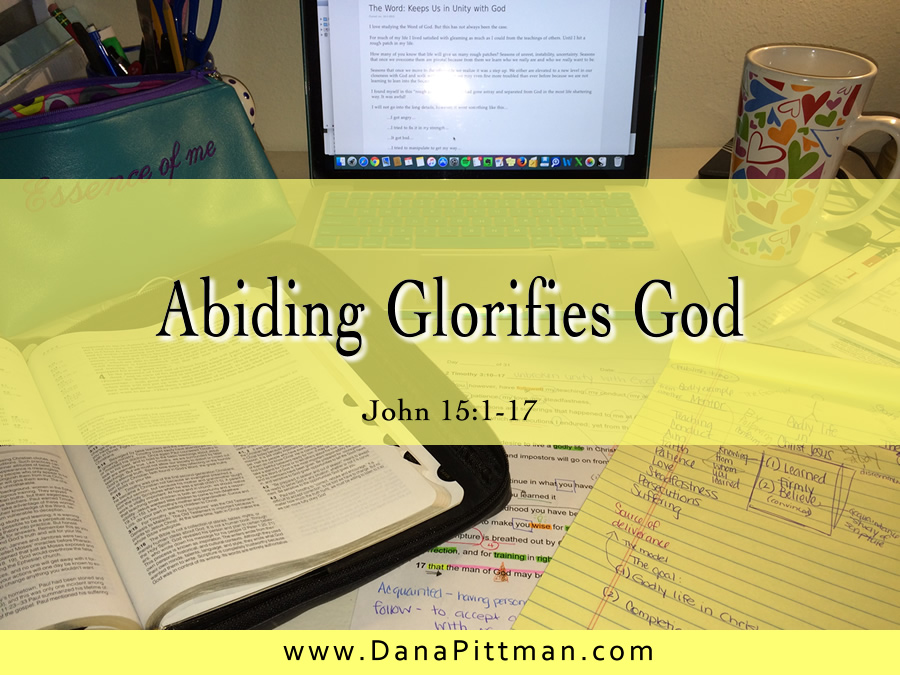 Day 6: Abiding Glorifies God | DanaPittman.com