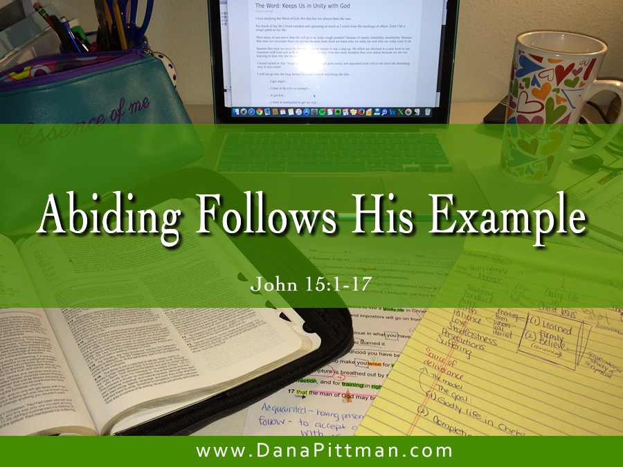 Day 7: Abiding Follows His Example | DanaPittman.com