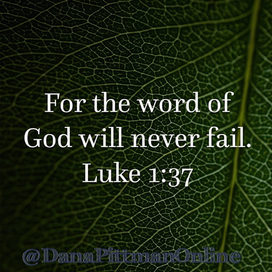Day 9: God's Word Never Fails | DanaPittman.com